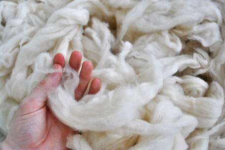 Wool_www_usda_gov.jpg